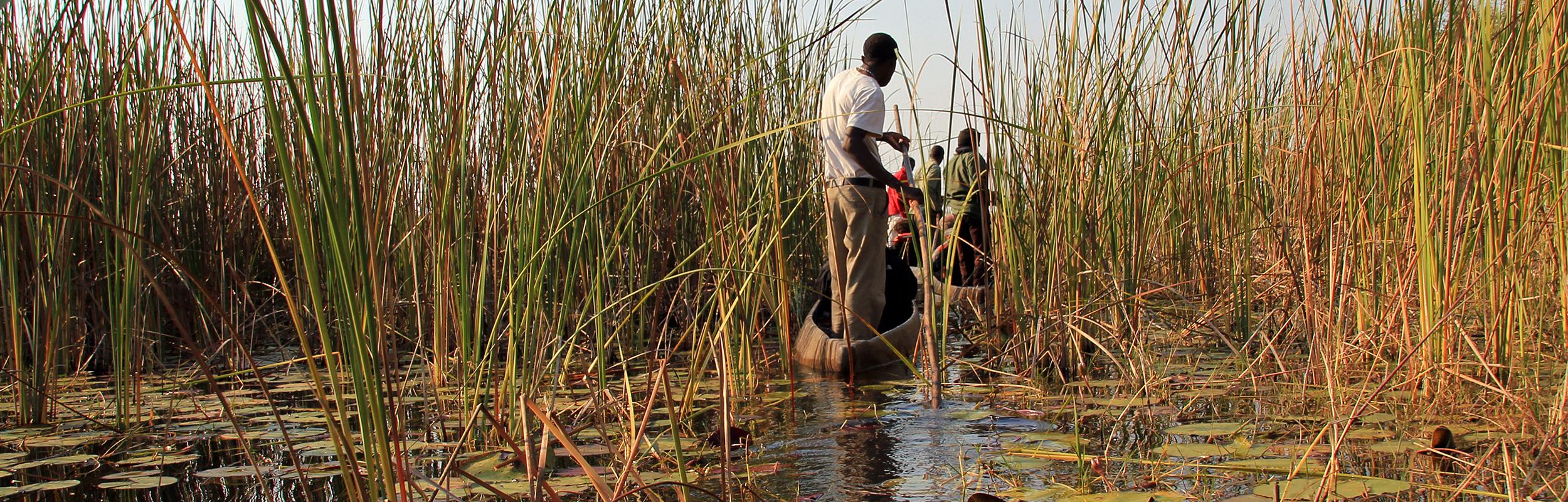Hoogtepunten in Botswana
